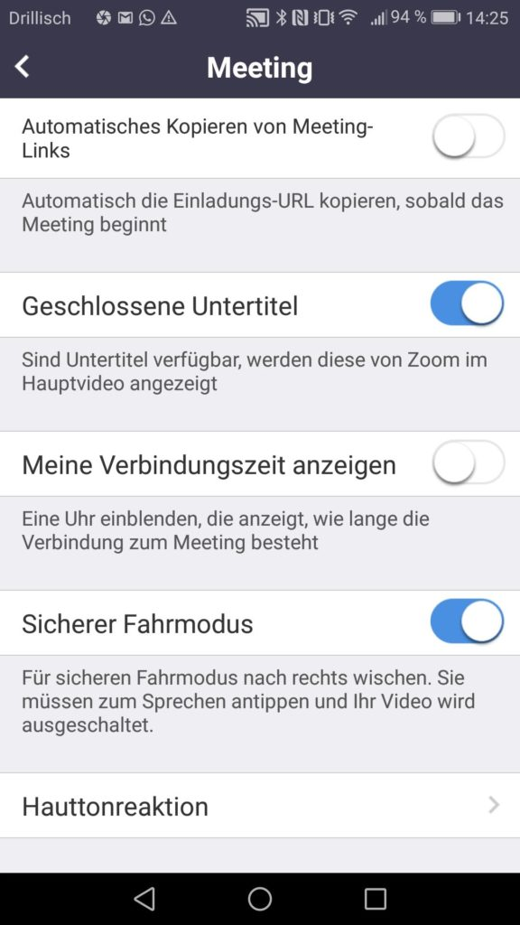 Zoom App Einstellungen II